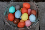 kool-aid eggs vs store bought dye eggs